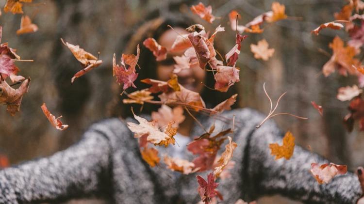 Activités à faire à deux en automne